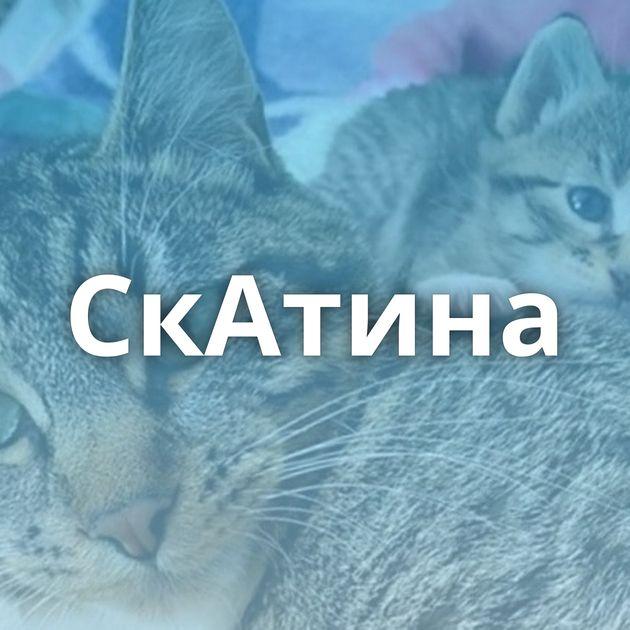 СкАтина