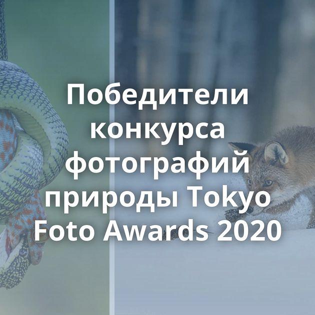 Победители конкурса фотографий природы Tokyo Foto Awards 2020