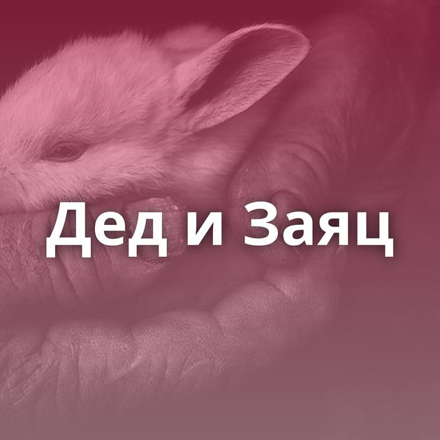 ДедиЗаяц