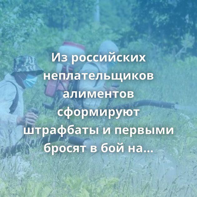 Изроссийских неплательщиков алиментов сформируют штрафбаты ипервыми бросят вбойнаборщевик