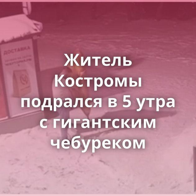 Житель Костромы подрался в5утра сгигантским чебуреком