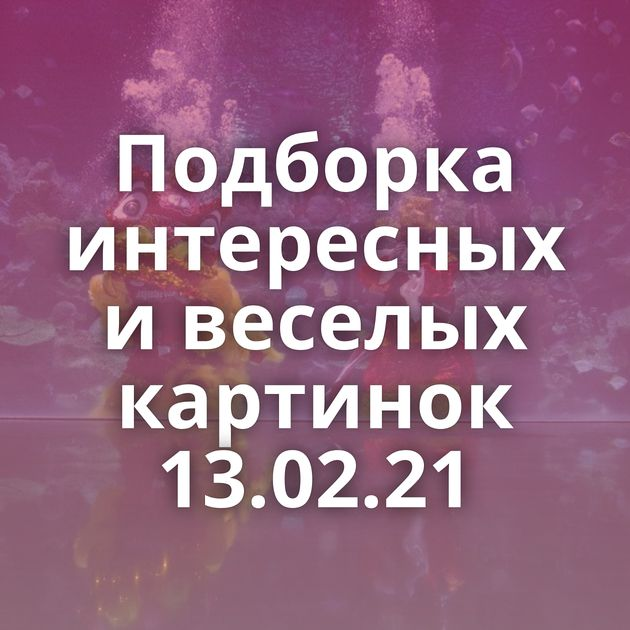 Подборка интересных и веселых картинок 13.02.21