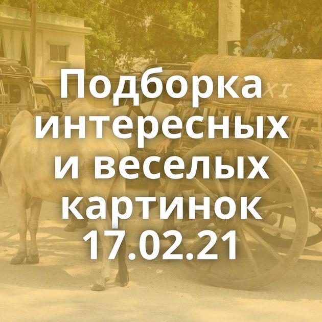 Подборка интересных и веселых картинок 17.02.21