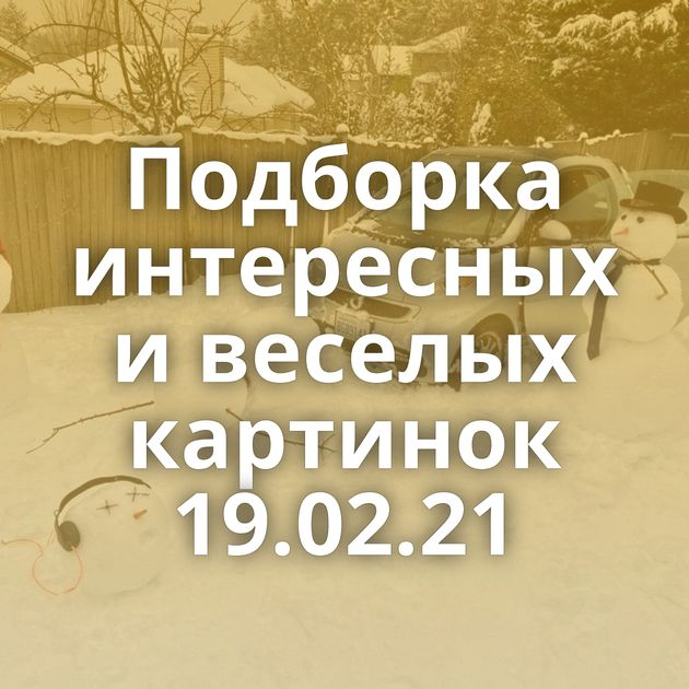 Подборка интересных и веселых картинок 19.02.21