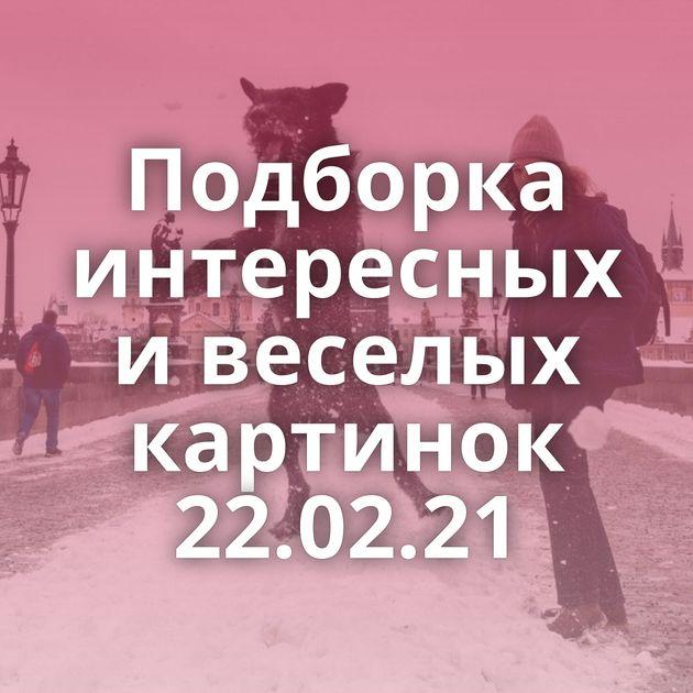 Подборка интересных и веселых картинок 22.02.21