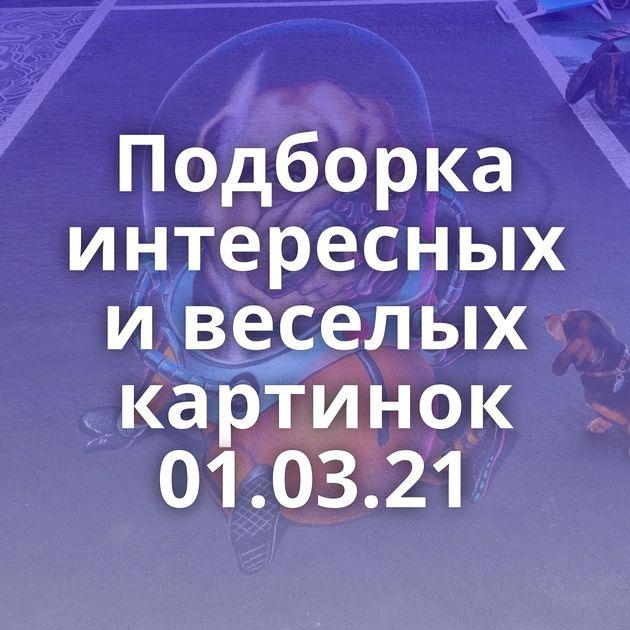 Подборка интересных и веселых картинок 01.03.21