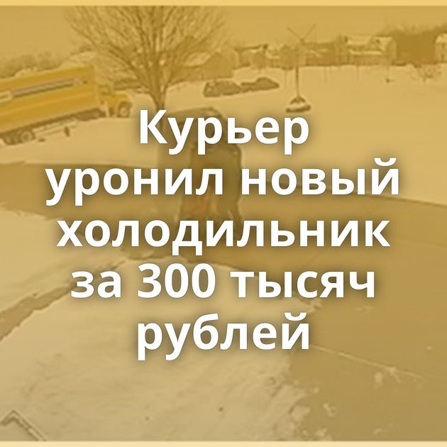 Курьер уронил новый холодильник за300тысяч рублей