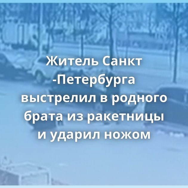 Житель Санкт -Петербурга выстрелил вродного брата изракетницы иударил ножом