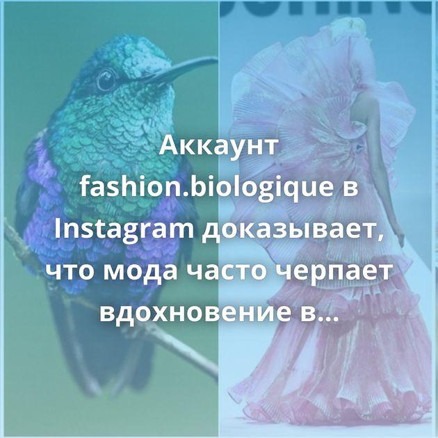 Аккаунт fashion.biologique в Instagram доказывает, что мода часто черпает вдохновение в природе