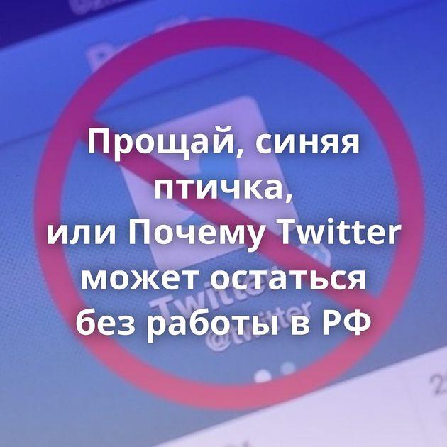 Прощай, синяя птичка, илиПочему Twitter может остаться безработы вРФ