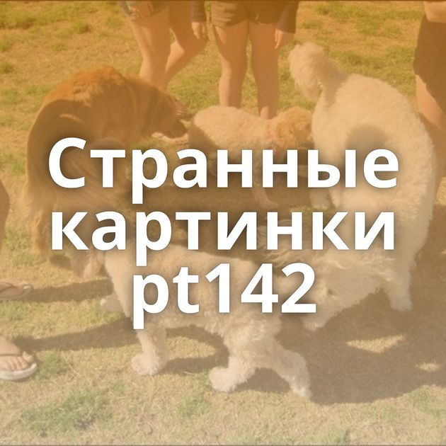 Странные картинки pt142
