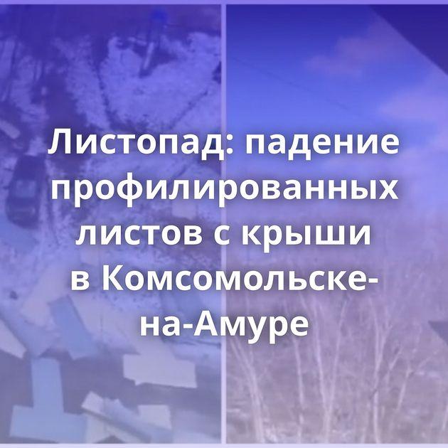 Листопад: падение профилированных листов скрыши вКомсомольске-на-Амуре