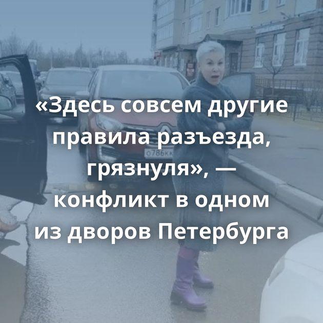 «Здесь совсем другие правила разъезда, грязнуля», — конфликт водном издворов Петербурга