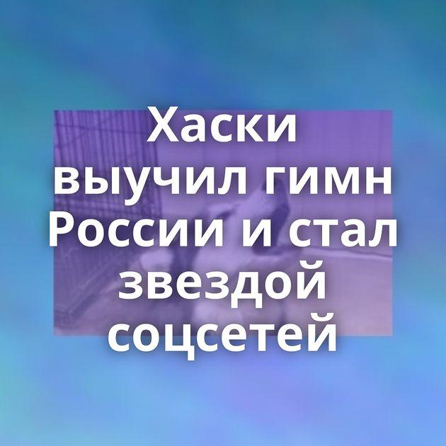 Хаски выучил гимн России истал звездой соцсетей