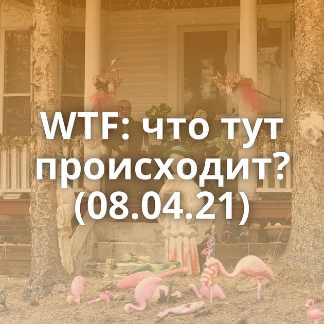 WTF: что тут происходит? (08.04.21)