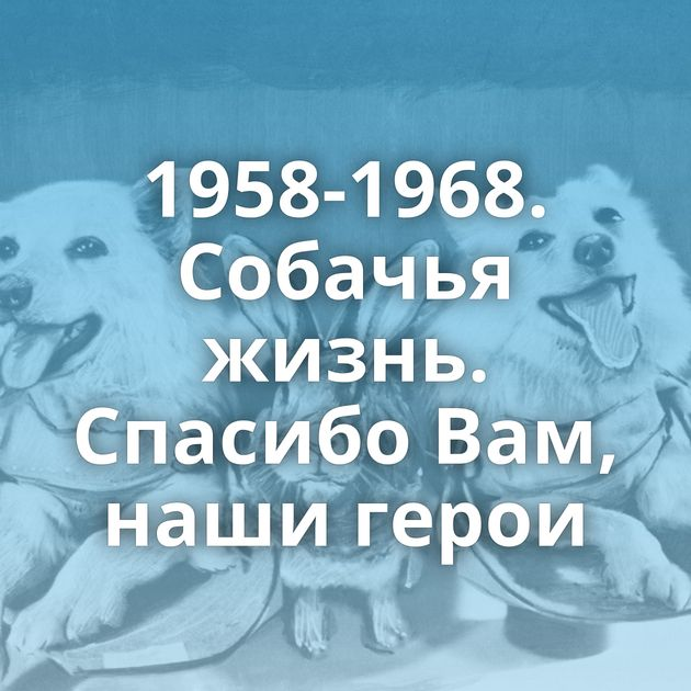 1958-1968. Собачья жизнь. Спасибо Вам, наши герои