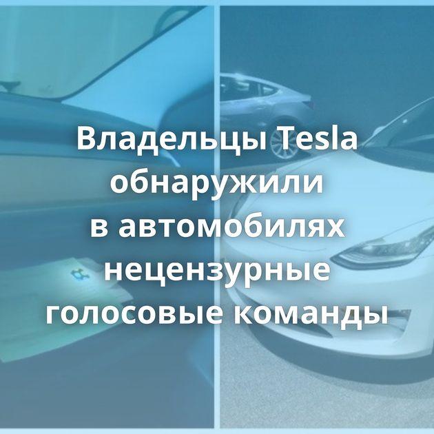 Владельцы Tesla обнаружили вавтомобилях нецензурные голосовые команды