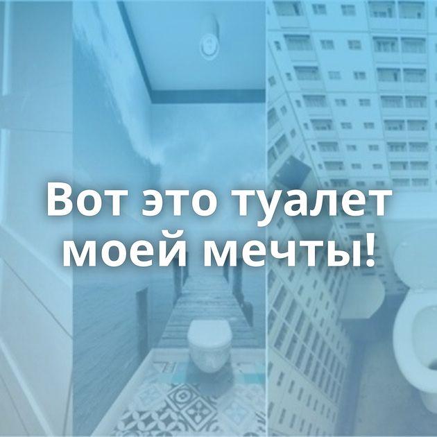Вотэтотуалет моей мечты!