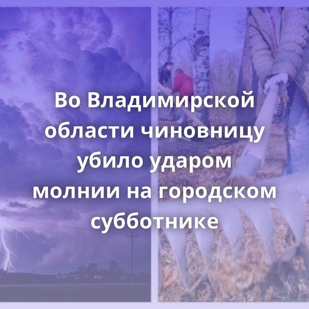 ВоВладимирской области чиновницу убило ударом молнии нагородском субботнике