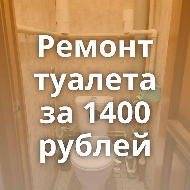 Ремонт туалета за 1400 рублей