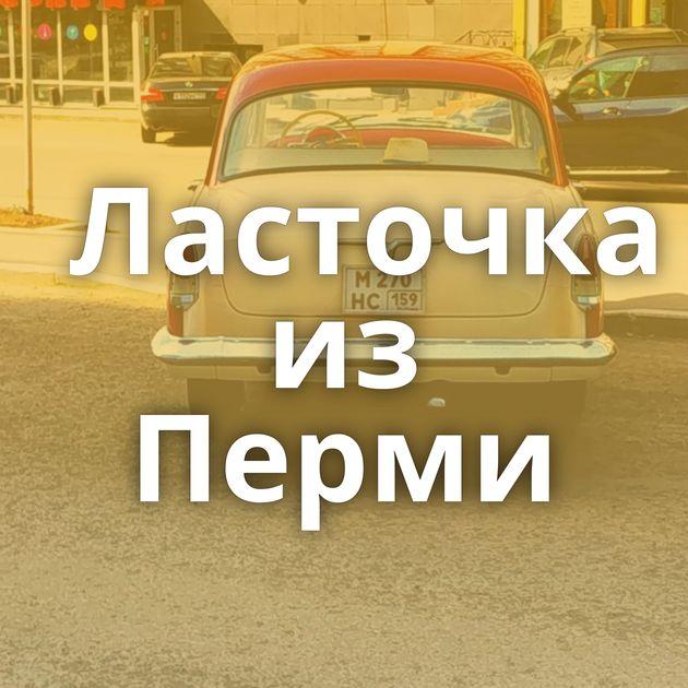 Ласточка из Перми