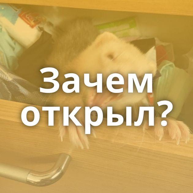 Зачем открыл?