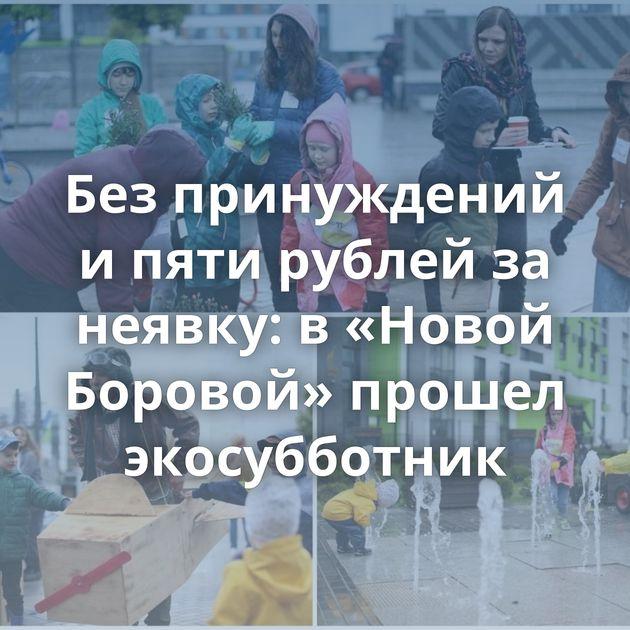 Без принуждений и пяти рублей за неявку: в «Новой Боровой» прошел экосубботник