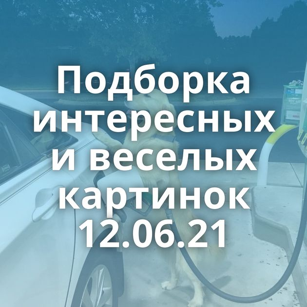Подборка интересных и веселых картинок 12.06.21