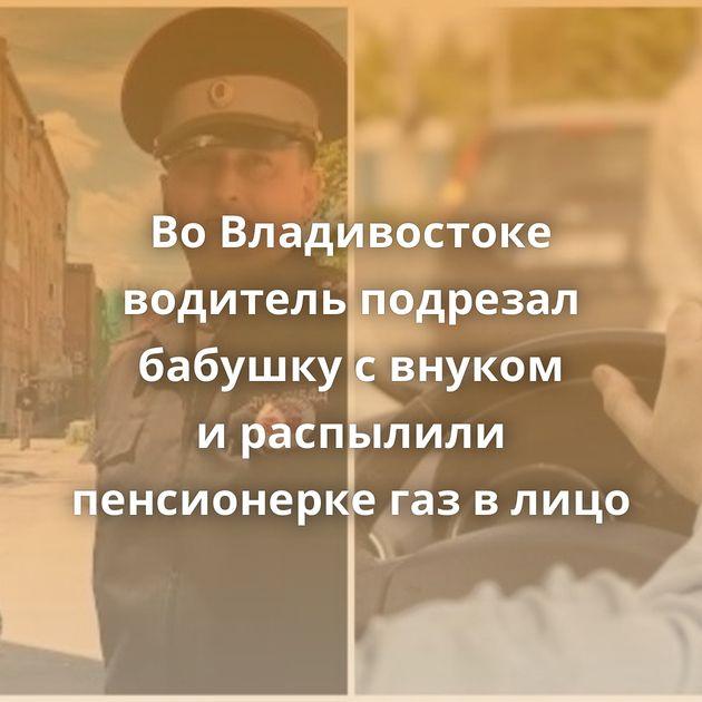 ВоВладивостоке водитель подрезал бабушку свнуком ираспылили пенсионерке газвлицо