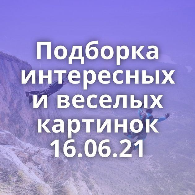 Подборка интересных и веселых картинок 16.06.21