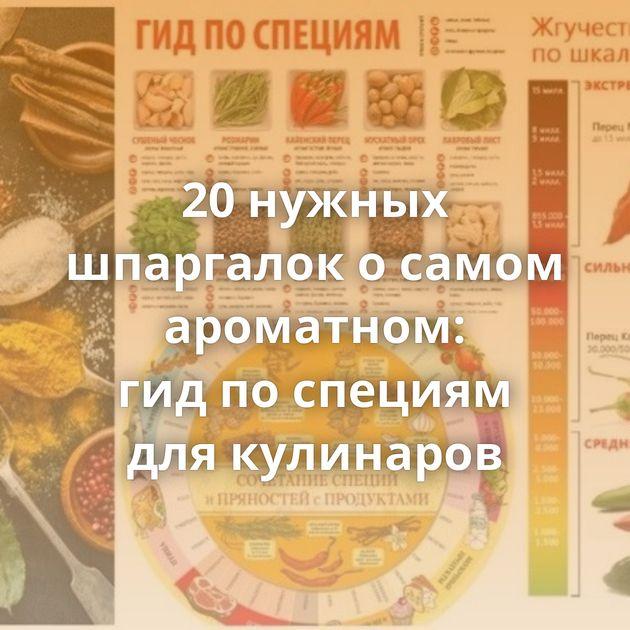 20нужных шпаргалок осамом ароматном: гидпоспециям длякулинаров