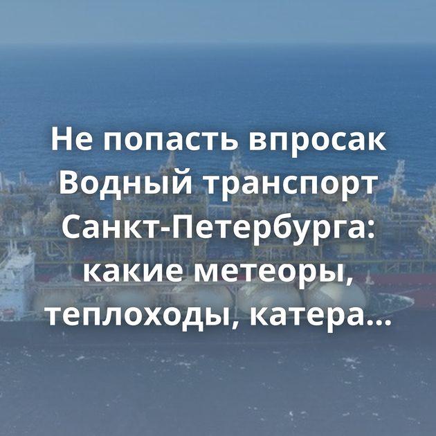 Не попасть впросак Водный транспорт Санкт-Петербурга: какие метеоры, теплоходы, катера можно увидеть в…