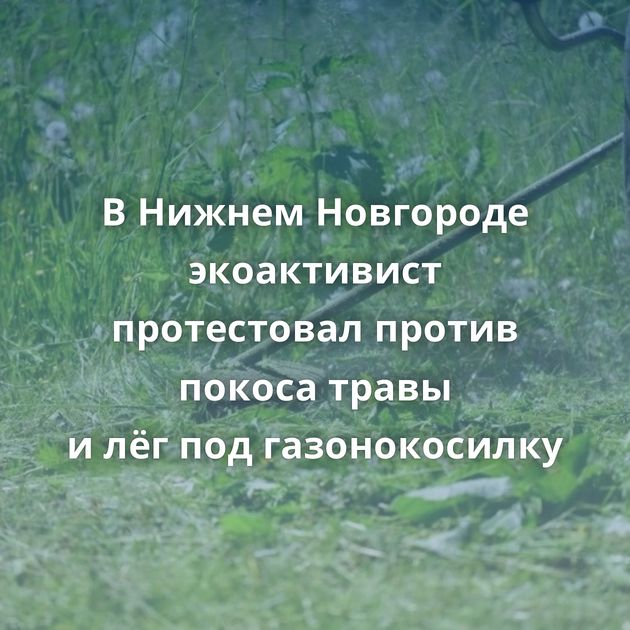ВНижнем Новгороде экоактивист протестовал против покоса травы илёгподгазонокосилку