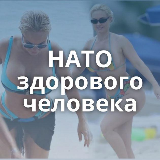 НАТО здорового человека