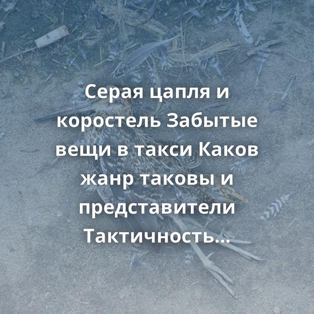 Серая цапля и коростель Забытые вещи в такси Каков жанр таковы и представители Тактичность Губерниев, иди…