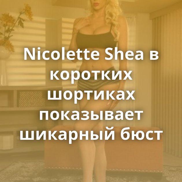 Nicolette Shea в коротких шортиках показывает шикарный бюст