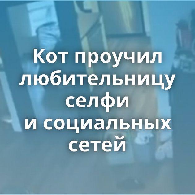 Котпроучил любительницу селфи исоциальных сетей