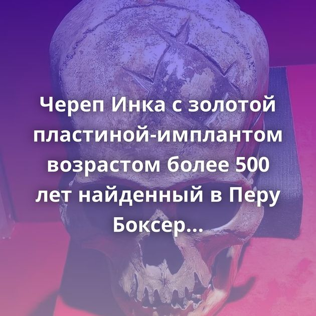 Череп Инка с золотой пластиной-имплантом возрастом более 500 лет найденный в Перу Боксер среднего веса UFC…
