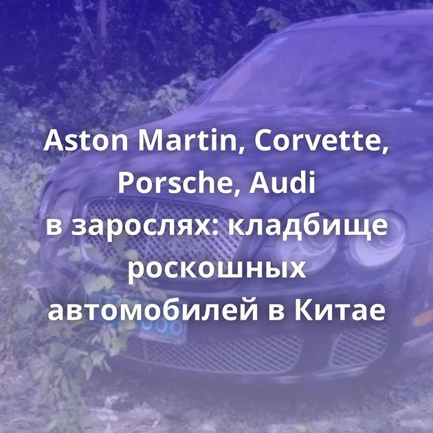 Aston Martin, Corvette, Porsche, Audi взарослях: кладбище роскошных автомобилей вКитае