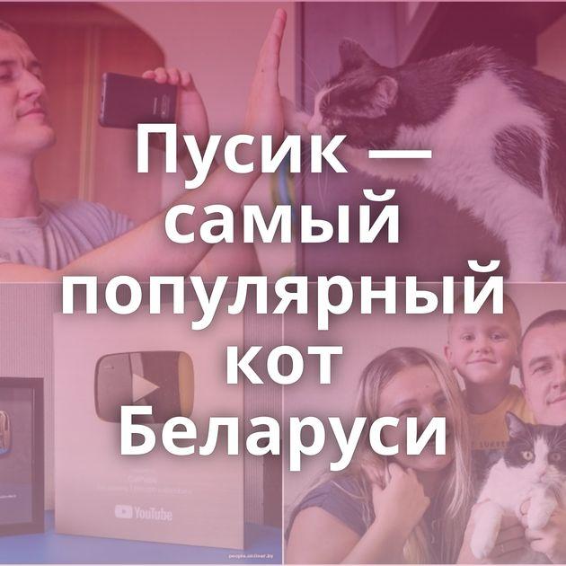 Пусик — самый популярный кот Беларуси