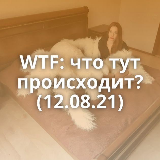 WTF: что тут происходит? (12.08.21)