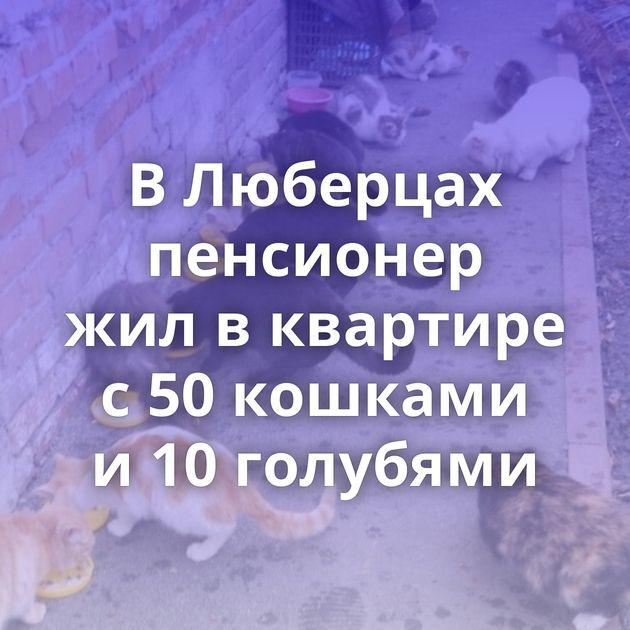 ВЛюберцах пенсионер жилвквартире с50кошками и10голубями