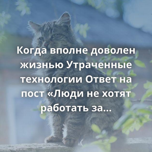 Когда вполне доволен жизнью Утраченные технологии Ответ на пост «Люди не хотят работать за 80 тысяч рублей в…