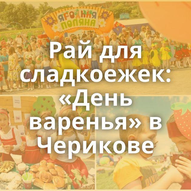 Рай для сладкоежек: «День варенья» в Черикове