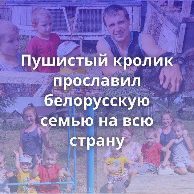 Пушистый кролик прославил белорусскую семью на всю страну