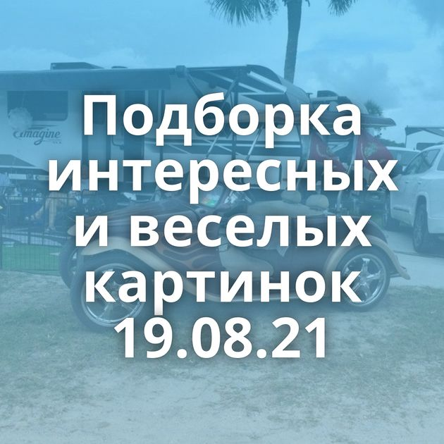 Подборка интересных и веселых картинок 19.08.21