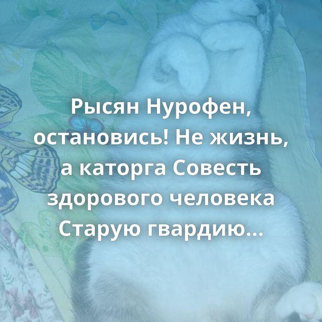 Рысян Нурофен, остановись! Не жизнь, а каторга Совесть здорового человека Старую гвардию не сломать…