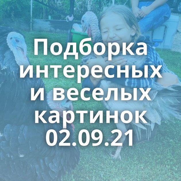 Подборка интересных и веселых картинок 02.09.21