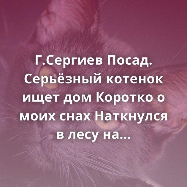 Г.Сергиев Посад. Серьёзный котенок ищет дом Коротко о моих снах Наткнулся в лесу на ловушки из тонкой…