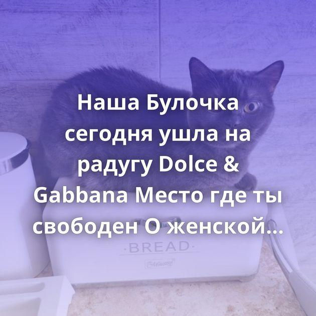Наша Булочка сегодня ушла на радугу Dolce & Gabbana Место где ты свободен О женской верности Ещё чуть-чуть Мама…